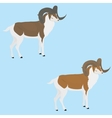 goat with long horn vector image