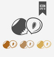 hazelnut isolated icon vector image vector image