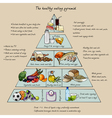 healthy eating pyramid vector image