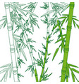 bamboo forest set spa nature plant tree with vector image