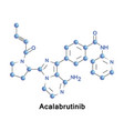 acalabrutinib experimental anti-cancer drug vector image vector image
