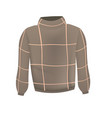 brown sweater vector image vector image