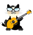 cat with guitar vector image vector image