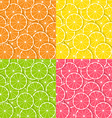 Citrus backgrounds vector image vector image