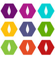 leaf of willow icon set color hexahedron vector image vector image