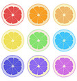 lemon orange grapefruit and lime vector image vector image
