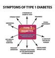symptoms type 1 diabetes infographics vector image vector image