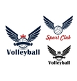 Volleyball game symbol with winged balls vector image vector image