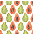 watercolor papaya pattern vector image vector image