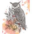 wild totem animal - Owl in ornamental gra vector image