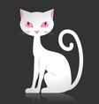 White cat vector image