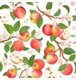 autumn apple seamless pattern summer fruits vector image vector image