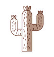 cactus desert isolated icon vector image vector image