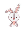 cute rabbit isolated icon vector image