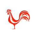 fiery rooster vector image