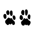 leopard footprint vector image vector image