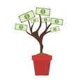 money plant icon vector image vector image