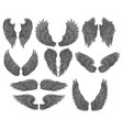 set of different angel or bird wings with vector image