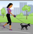 young woman walks with a dog in park vector image