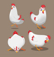 chicken animal cartoon pose set vector image vector image
