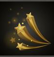 golden bright shiny stars vector image vector image