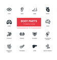 body parts - modern simple thin line design icons vector image