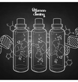 graphic fetus in glass bottle vector image