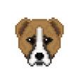 head alabai dog in pixel art style vector image vector image