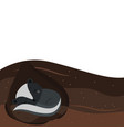let it snow fox sleeping in hole vector image vector image