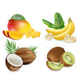 mango coconut kiwi and banana realistic set vector image vector image