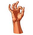 OK Hand Gesture vector image vector image