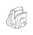 school backpack sketch vector image vector image