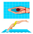 swimmers in competition swim sport vector image