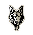 alsatian wolf dog head mascot vector image vector image
