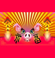 chinese new year happy new year 2019 pig muzzle vector image