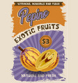 pepino exotic fruit retro poster with cheap price vector image vector image