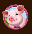 pig icon with frame vector image vector image