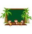 three monkey on blackboard template vector image