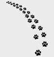 trail of cat vector image vector image
