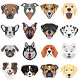 collection dogs vector image vector image