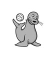 happy seal playing ball design vector image vector image