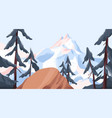 panoramic view from cliff on mountain peak covered vector image