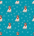 pattern with a dog vector image vector image