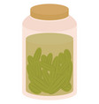 pickles in jar on white background vector image vector image