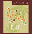 retro poster of cannabis plant molecule vector image vector image
