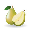 whole pear and a half vector image