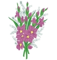 Bouquet of lilac gladioluses vector image vector image