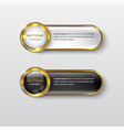 button premium glossy black and white gold vector image vector image