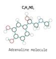 C9H13NO3 adrenaline molecule vector image