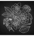 Collection of graphic flowers vector image vector image